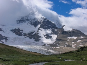 Mt. Robson seen from meadow below Snowbird Pass