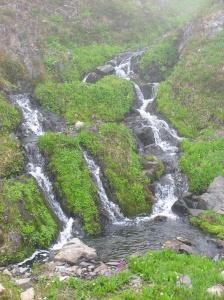 Meadow and waterfalls below Heart Lake
