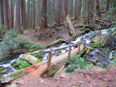 Olympic National Park - High Divide Trail