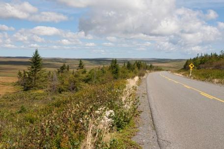 Highway 100