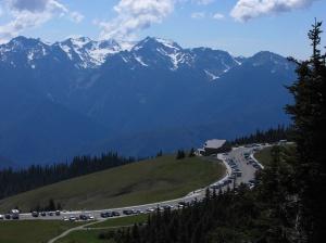 Hurricane Ridge Visitor Centre & Mount Olympus