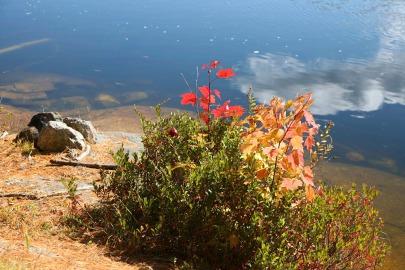 Lac Monette