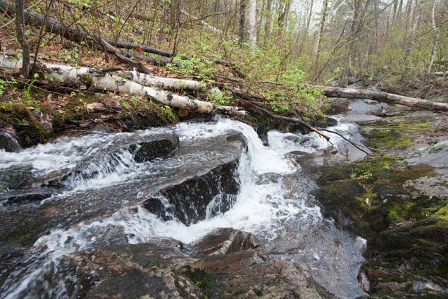 Faris Creek