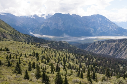 Sheep Creek Trail