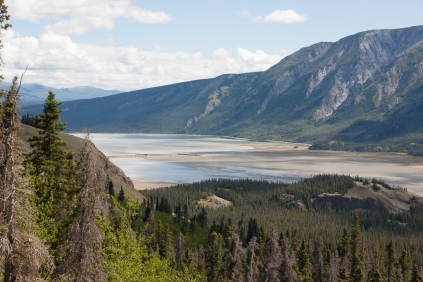 Sheep Creek Trail: Slims River flowing into Kluane Lake