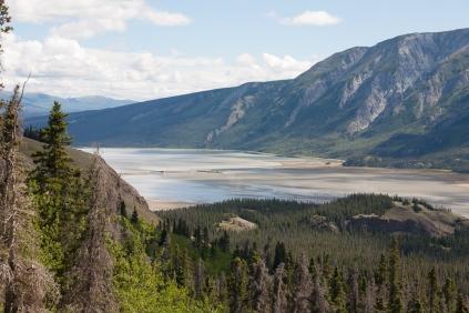 Sheep Creek Trail: Slims River flowing into Kluane Lake