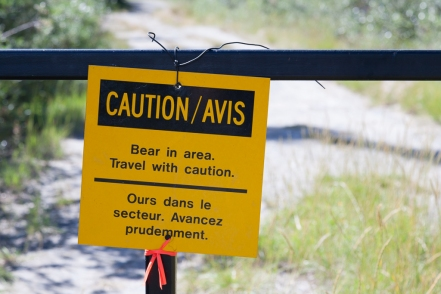 Sheep Creek Trail: Dangers today...