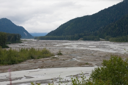 Alleuvial flats of the Chilkat River
