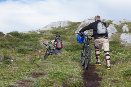 Gray Mountain: We shared the trail with mountain bikers...