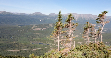 Caribou Mountain: The hike to the summit rises steeply above treeline