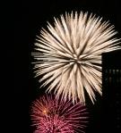 Fireworks behind Tunney's Pasture