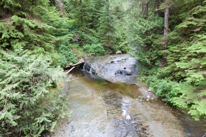 Walbran Creek to Camper Creek