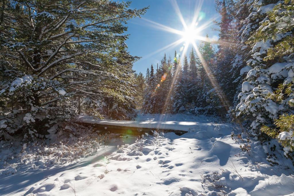 Peck Lake Snowshoe