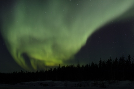 Aurora along the Ingraham Trail