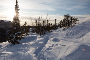 Snowshoe outing